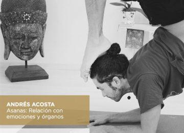 Asanas: Relación con emociones y órganos I 25 de Mayo